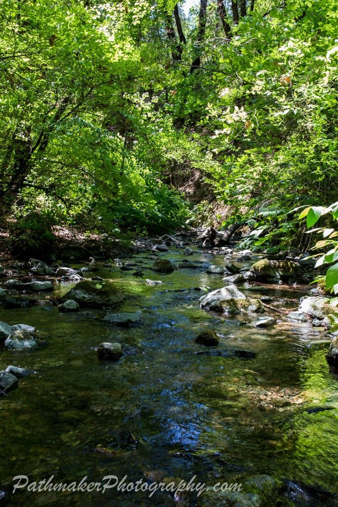 Day 49 – Shasta Nat Forest to Redwood Creek