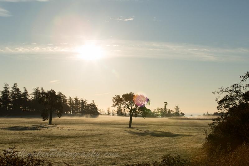 Albert Head Lagoon Sunrise (15 of 15)