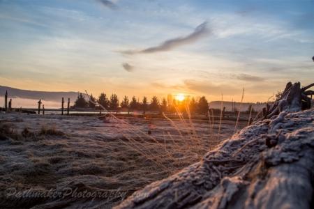 Cowichan Bay Sunrise-5