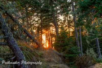 East Sooke Park Sunset - Aug 2017 (1)