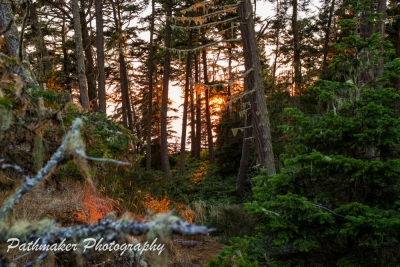 East Sooke Park Sunset - Aug 2017 (21)