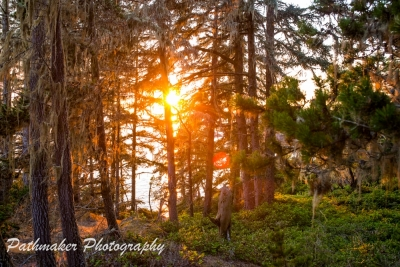 East Sooke Park Sunset - Aug 2017 (3)