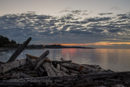 Esquimalt Lagoon Sunrise (1 of 1)