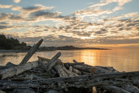 Esquimalt Lagoon Sunrise (18 of 26)