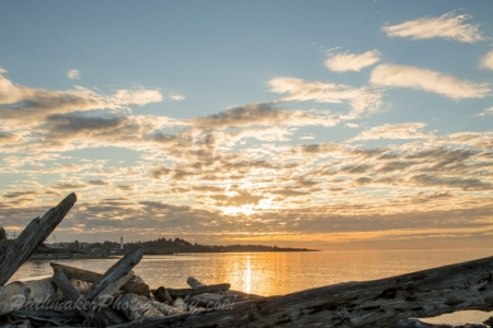 Esquimalt Lagoon Sunrise (19 of 26)