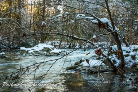 Koksilah River (8)