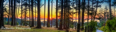 Metchosin Sunrise (1)