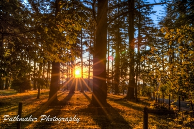 Metchosin Sunrise (5)