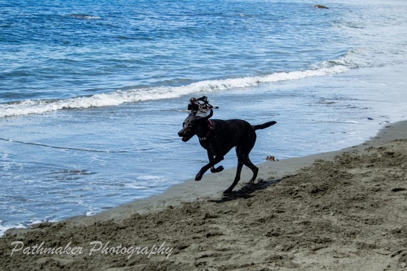 Mystic-Beach-9-of-12
