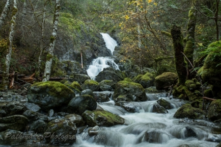 Sooke Potholes (8 of 17)